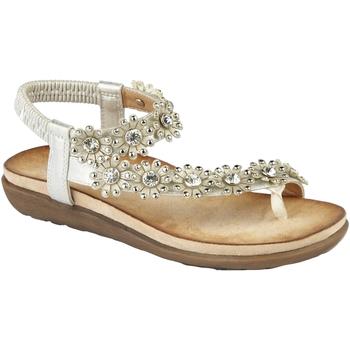 Schoenen Dames Sandalen / Open schoenen Cipriata  Licht Zilver