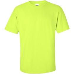 Textiel Heren T-shirts korte mouwen Gildan Ultra Nieuwe Veiligheid Groen