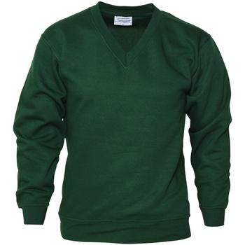Textiel Heren Sweaters / Sweatshirts Absolute Apparel  Fles