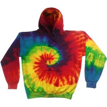 Textiel Heren Sweaters / Sweatshirts Colortone TD31M Regenboog