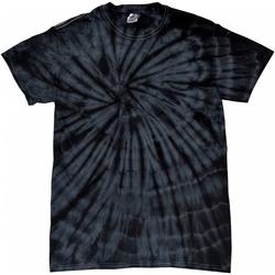 Textiel Kinderen T-shirts korte mouwen Colortone Spider Spin zwart
