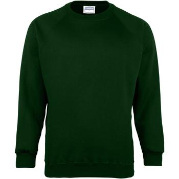 Textiel Heren Sweaters / Sweatshirts Maddins MD01M Fles groen