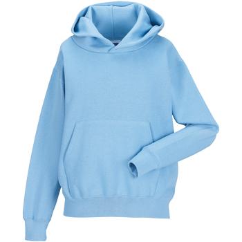 Textiel Kinderen Sweaters / Sweatshirts Jerzees Schoolgear 575B Hemelsblauw