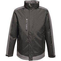 Textiel Heren Fleece Regatta  Signaal Zwart/Signaal Grijs