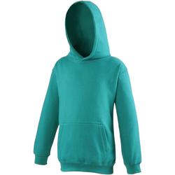 Textiel Kinderen Sweaters / Sweatshirts Awdis JH01J Jade