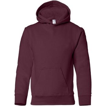 Textiel Kinderen Sweaters / Sweatshirts Gildan 18500B Marron