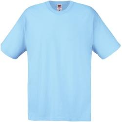 Textiel Heren T-shirts korte mouwen Fruit Of The Loom 61082 Hemel Blauw