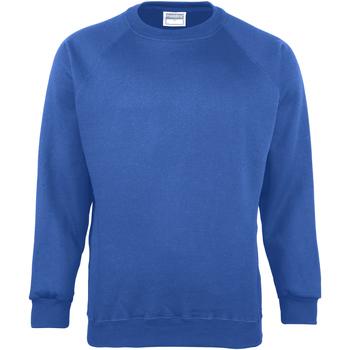 Textiel Kinderen Sweaters / Sweatshirts Maddins MD01B Ocean Royal