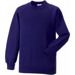 Textiel Kinderen Sweaters / Sweatshirts Jerzees Schoolgear 7620B Paars