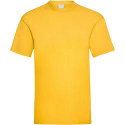 Textiel Heren T-shirts korte mouwen Universal Textiles 61036 Goud