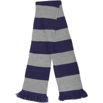 Accessoires Sjaals Floso  Blauw/zilver