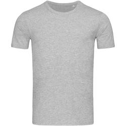 Textiel Heren T-shirts korte mouwen Stedman Stars Morgan Lichtgrijs