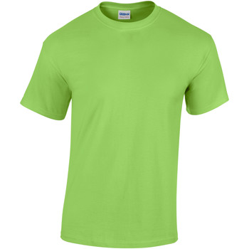 Textiel Kinderen T-shirts korte mouwen Gildan 5000B Kalk