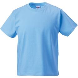 Textiel Kinderen T-shirts korte mouwen Jerzees Schoolgear ZT180B Hemelsblauw
