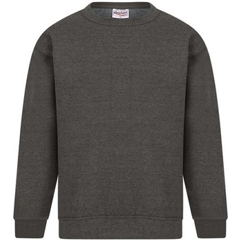 Textiel Heren Sweaters / Sweatshirts Absolute Apparel Sterling Houtskool