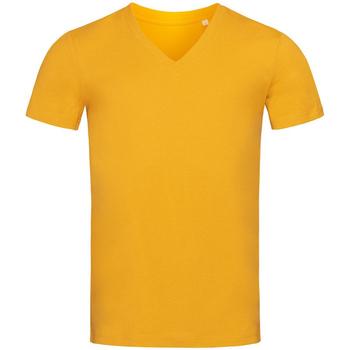 Textiel Heren T-shirts korte mouwen Stedman Stars  Curry Geel