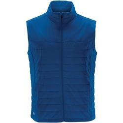 Textiel Heren Vesten / Cardigans Stormtech KXV-1 Azuurblauw
