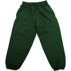 Textiel Kinderen Trainingsbroeken Jerzees Schoolgear 750B Fles groen