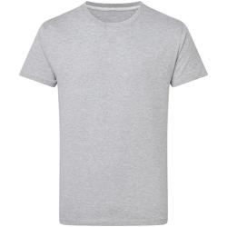 Textiel Heren T-shirts korte mouwen Sg Perfect Licht Oxford