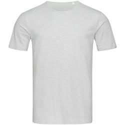 Textiel Heren T-shirts korte mouwen Stedman Stars Shawn Lichtgrijs
