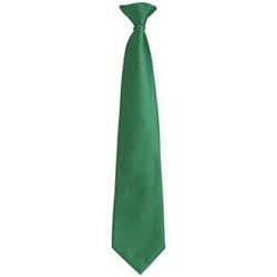 Textiel Heren Stropdassen en accessoires Premier PR785 Smaragd