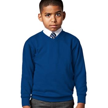 Textiel Kinderen Sweaters / Sweatshirts Jerzees Schoolgear 272B Helder Koninklijk