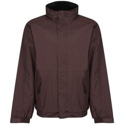 Textiel Heren Wind jackets Regatta  Bruin