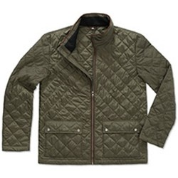 Textiel Heren Wind jackets Stedman  Groen