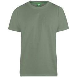 Textiel Heren T-shirts korte mouwen Duke Flyers-2 Khaki