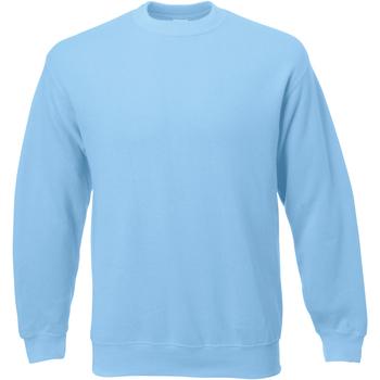 Textiel Heren Sweaters / Sweatshirts Universal Textiles 62202 Lichtblauw