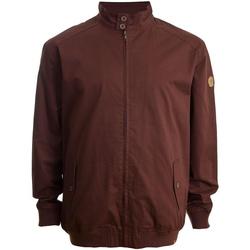 Textiel Heren Wind jackets Duke Windsor Bourgondië