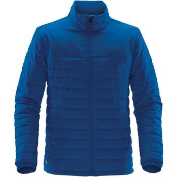 Textiel Heren Dons gevoerde jassen Stormtech QX-1 Azuurblauw