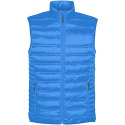 Textiel Heren Vesten / Cardigans Stormtech ST158 Elektrisch Blauw