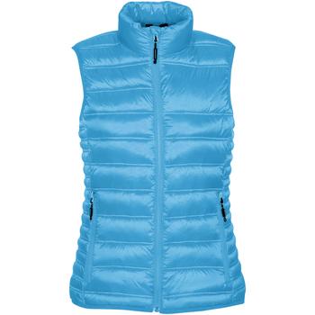 Textiel Dames Dons gevoerde jassen Stormtech ST159 Elektrisch Blauw