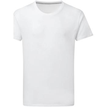 Textiel Heren T-shirts korte mouwen Sg Perfect Wit