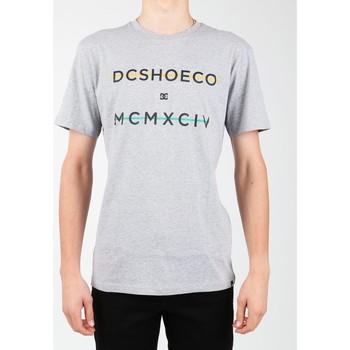 Textiel Heren T-shirts korte mouwen DC Shoes DC SEDYZT03760-KNFH grey