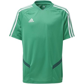 Textiel Kinderen T-shirts & Polo's adidas Originals Tiro 19 Training Voetbalshirt Groen