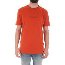 Textiel Heren T-shirts korte mouwen Calvin Klein Jeans K10K104934 Arancio