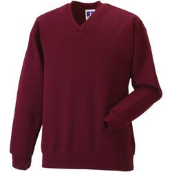 Textiel Kinderen Sweaters / Sweatshirts Jerzees Schoolgear 272B Bourgondië
