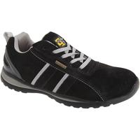 Schoenen Heren Lage sneakers Grafters  Zwart/Grijs