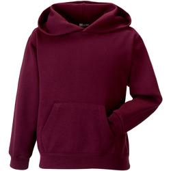 Textiel Kinderen Sweaters / Sweatshirts Jerzees Schoolgear 575B Bourgondië