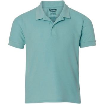 Textiel Heren Polo's korte mouwen Gildan Premium Chalky MInt