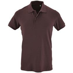 Textiel Heren Polo's korte mouwen Sols PHOENIX MEN SPORT Violeta