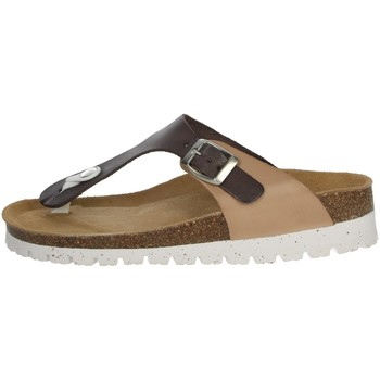 Schoenen Dames Teenslippers Riposella C115 Brown/Beige