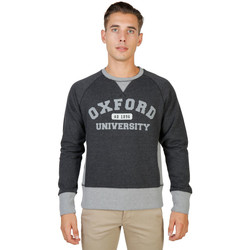 Textiel Heren Sweaters / Sweatshirts Oxford University - oxford-fleece-raglan Grijs