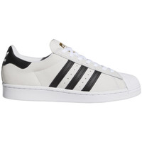 Schoenen Heren Skateschoenen adidas Originals Superstar adv Wit