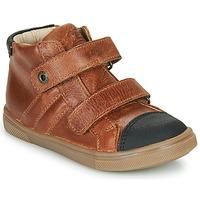 Schoenen Jongens Hoge sneakers GBB KERWAN Bruin