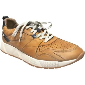 Schoenen Heren Lage sneakers Pikolinos Meliana-m6p-6322 Geel leer