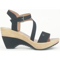 Schoenen Dames Sandalen / Open schoenen Chattawak Compensée 9-MAELLE Noir Zwart