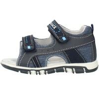 Schoenen Kinderen Sandalen / Open schoenen Lumberjack SB42106005X84 Blue